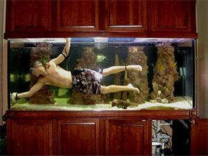 Aquarium management Service